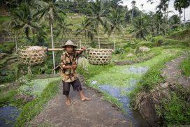 Roteiro Bali | Itinerário, gastos e dicas de viagem