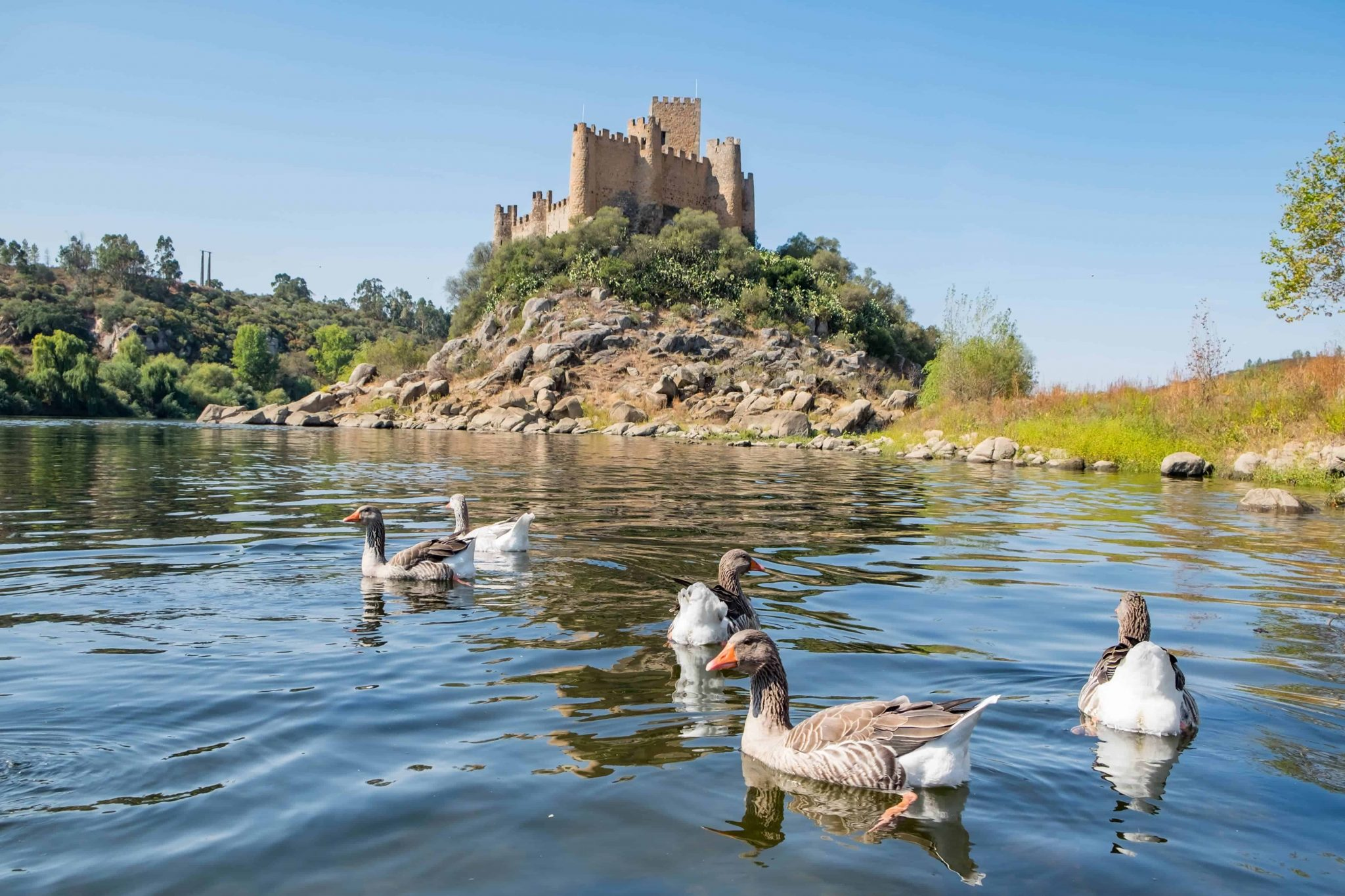 visitar tomar castelo de almourol
