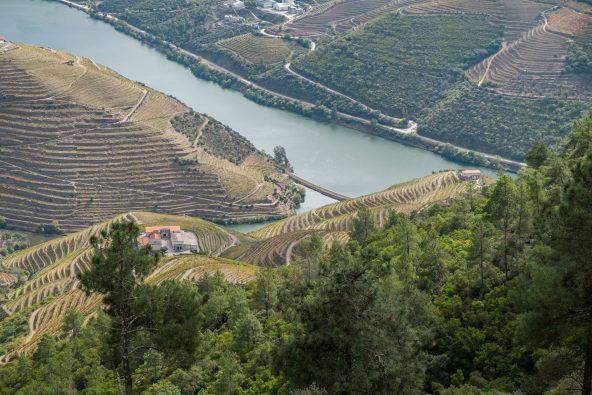 visitar douro vinhateiro
